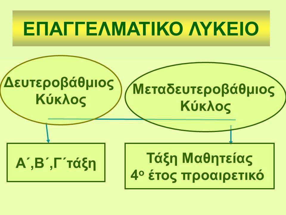 ΕΠΑΓΓΕΛΜΑΤΙΚΟ ΛΥΚΕΙΟ Δευτεροβάθμιος Μεταδευτεροβάθμιος Κύκλος Κύκλος
