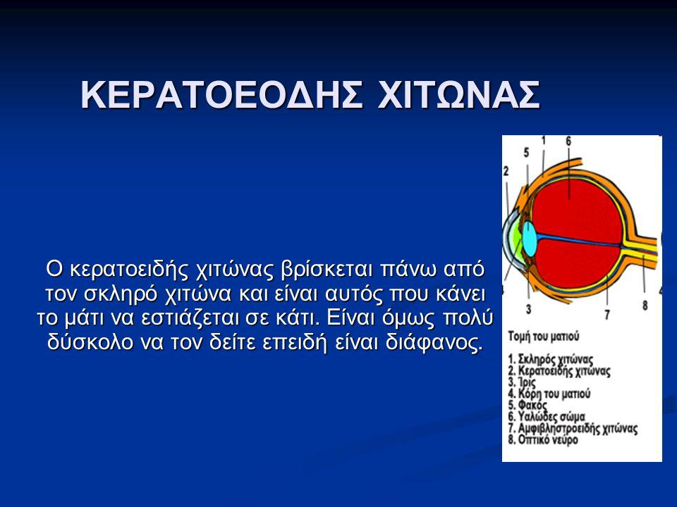 ΚΕΡΑΤΟΕΟΔΗΣ ΧΙΤΩΝΑΣ