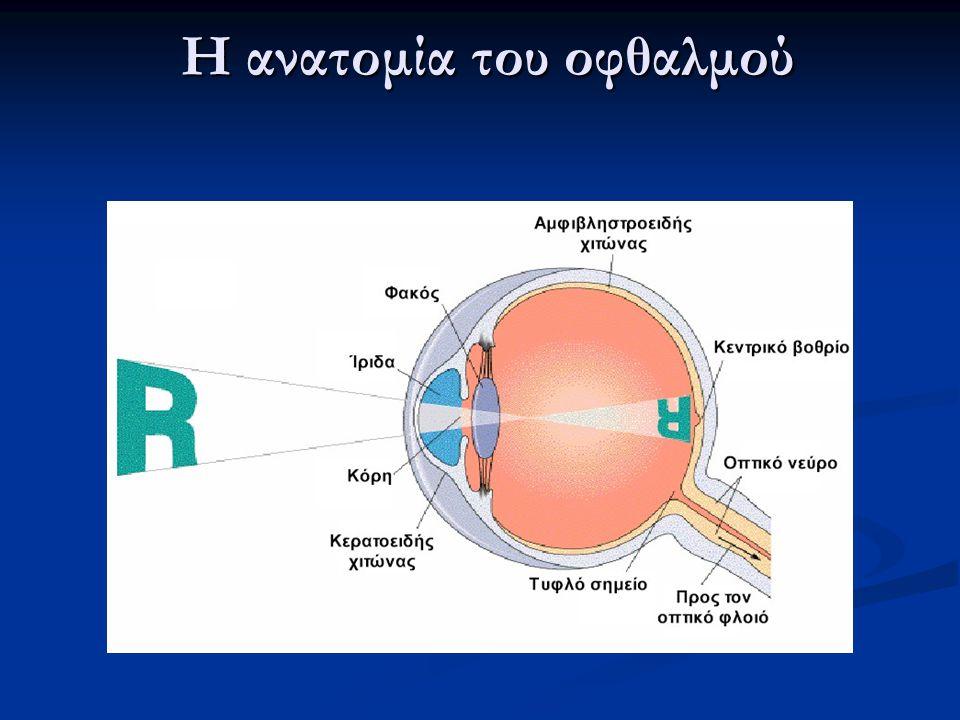 Η ανατομία του οφθαλμού