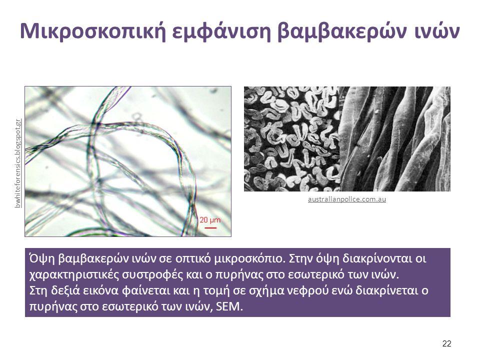Σύστημα πολυμερών του βαμβακιού (1 από 2)