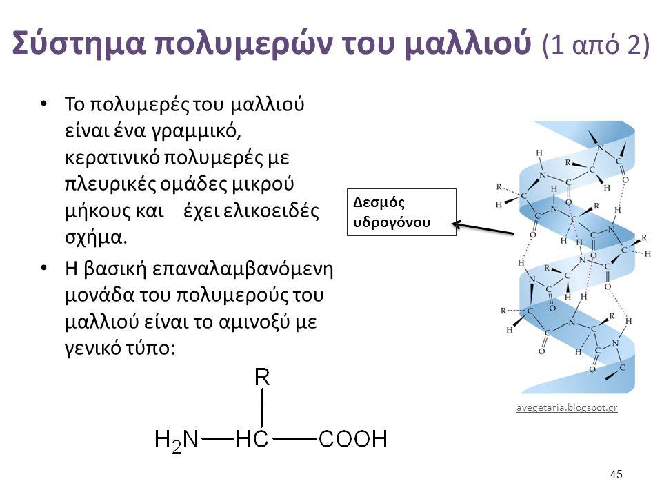 Σύστημα πολυμερών του μαλλιού (2 από 2)
