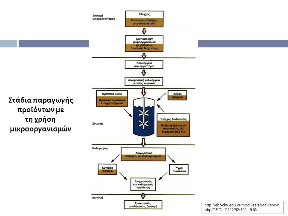 Στάδια παραγωγής προϊόντων με τη χρήση μικροοργανισμών
