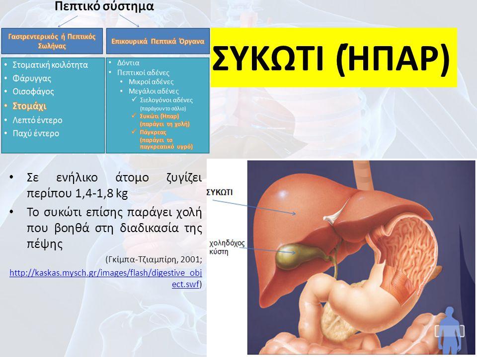ΣΥΚΩΤΙ (ΉΠΑΡ) Σε ενήλικο άτομο ζυγίζει περίπου 1,4-1,8 kg