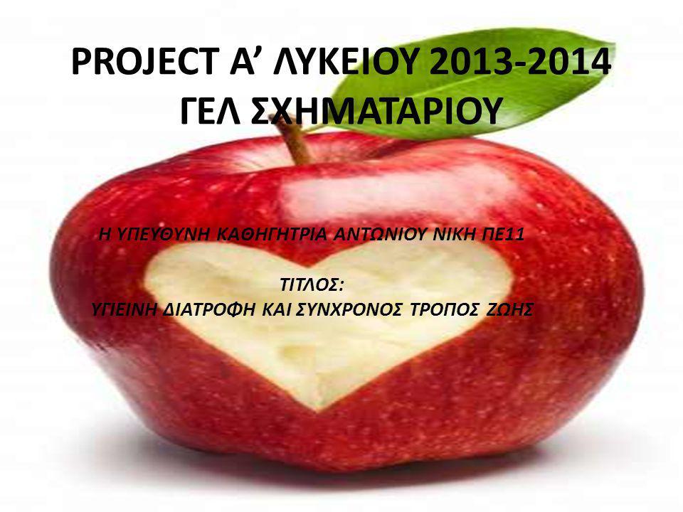 PROJECT Α' ΛΥΚΕΙΟΥ 2013-2014 ΓΕΛ ΣΧΗΜΑΤΑΡΙΟΥ