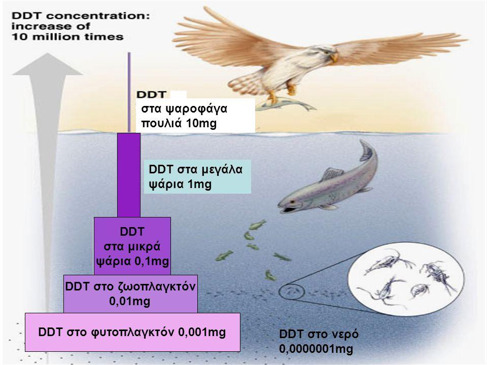 DDT στο φυτοπλαγκτόν 0,001mg