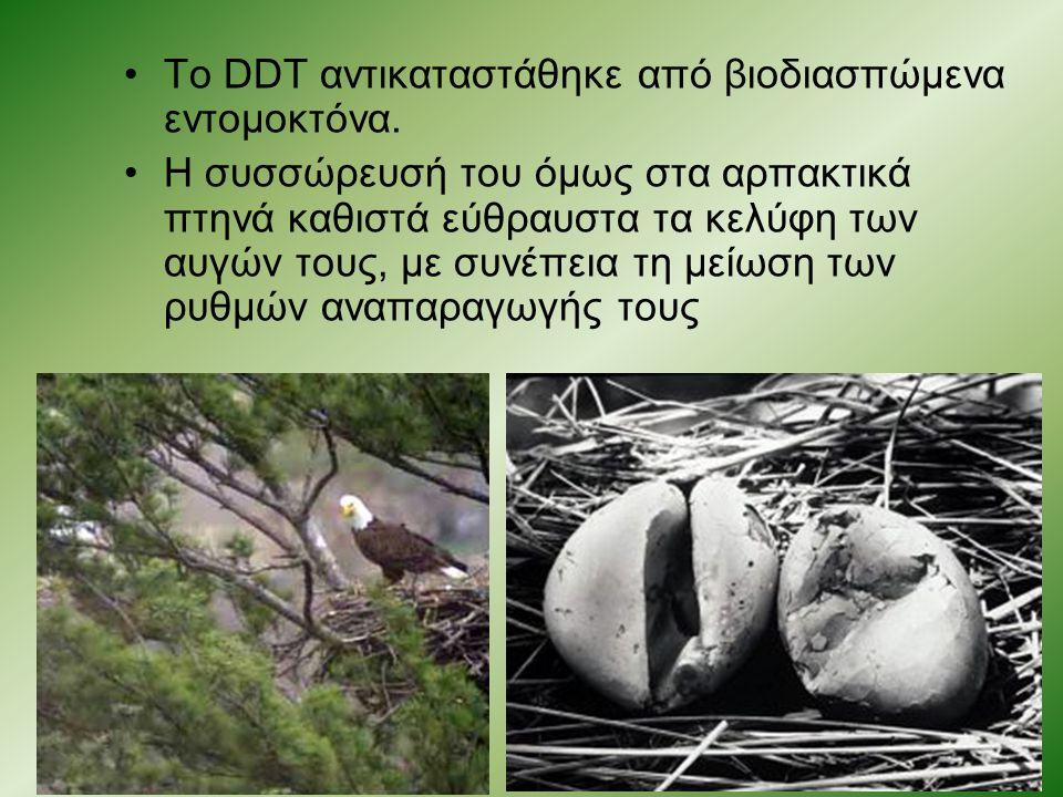 Το DDT αντικαταστάθηκε από βιοδιασπώμενα εντομοκτόνα.