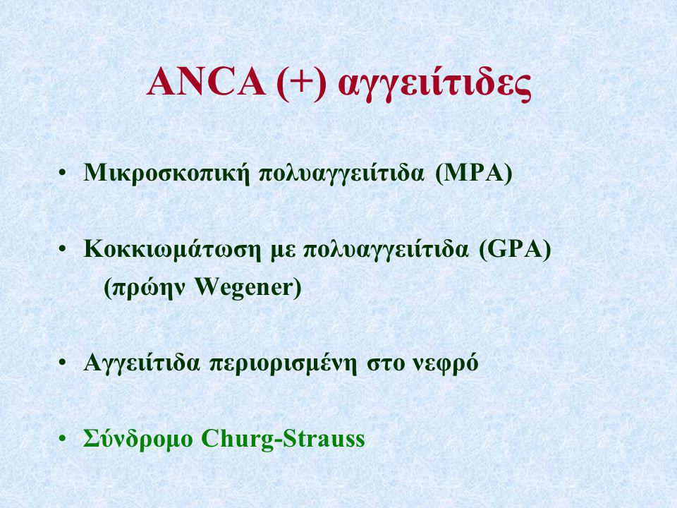 ANCΑ (+) αγγειίτιδες Μικροσκοπική πολυαγγειίτιδα (MPA)