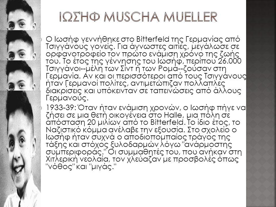 Ιωσήφ Muscha Mueller