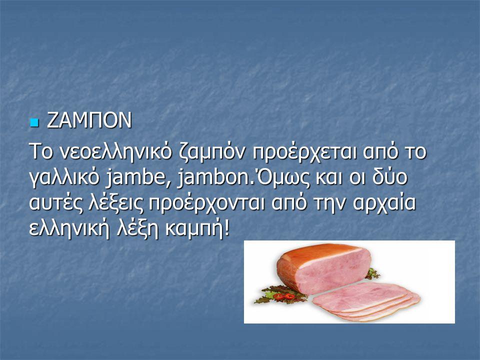 ΖΑΜΠΟΝ Το νεοελληνικό ζαμπόν προέρχεται από το γαλλικό jambe, jambon.Όμως και οι δύο αυτές λέξεις προέρχονται από την αρχαία ελληνική λέξη καμπή!