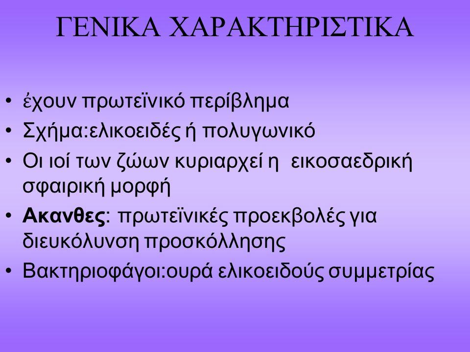 ΓΕΝΙΚΑ ΧΑΡΑΚΤΗΡΙΣΤΙΚΑ