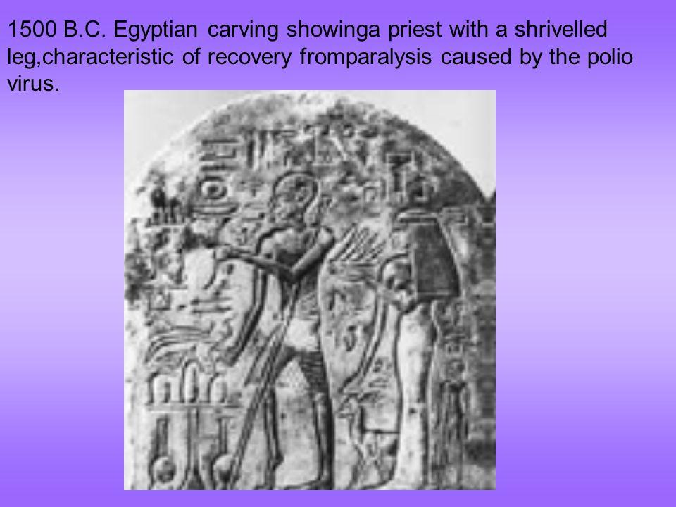 1500 B.C.
