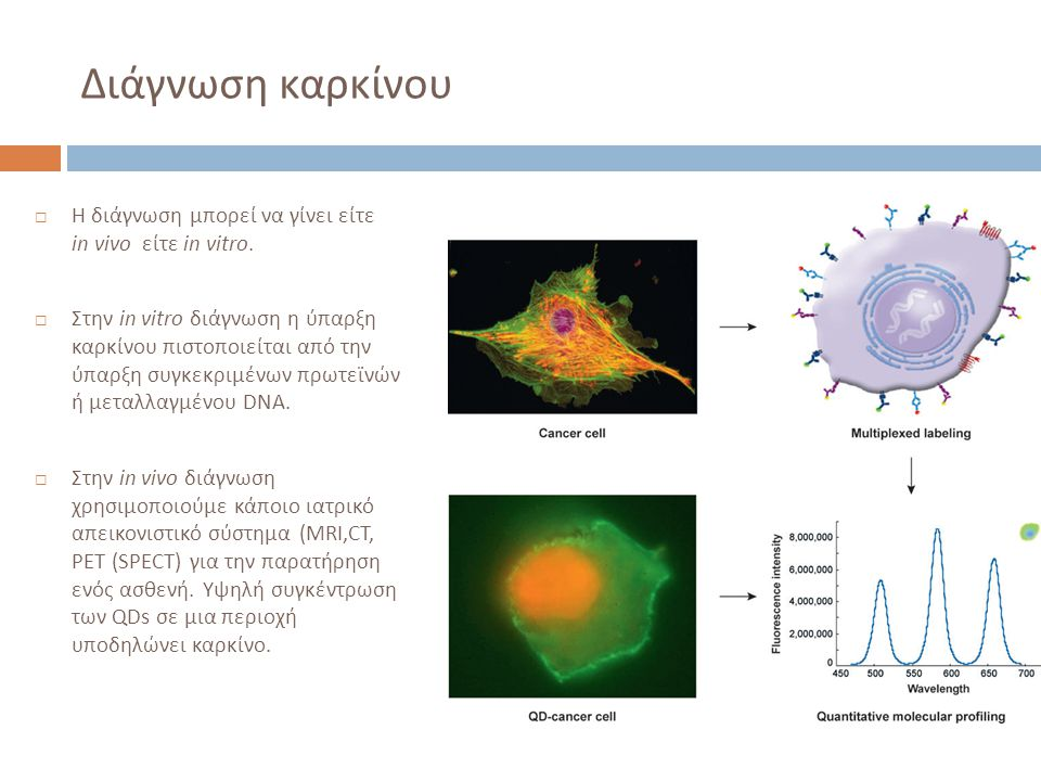 Διάγνωση καρκίνου Η διάγνωση μπορεί να γίνει είτε in vivo είτε in vitro.