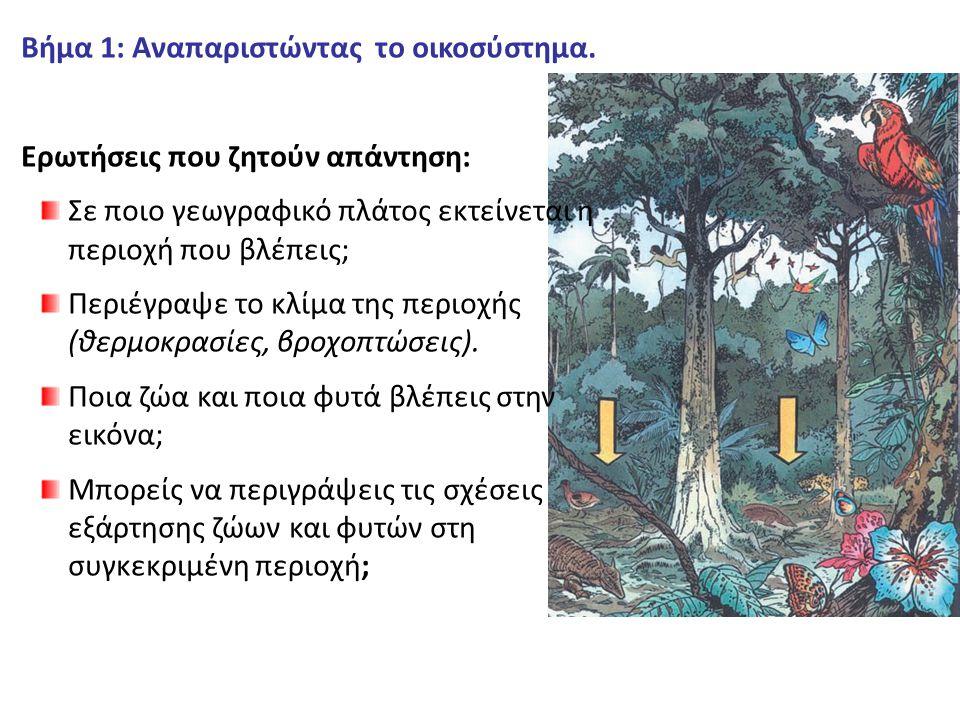 Βήμα 1: Αναπαριστώντας το οικοσύστημα.