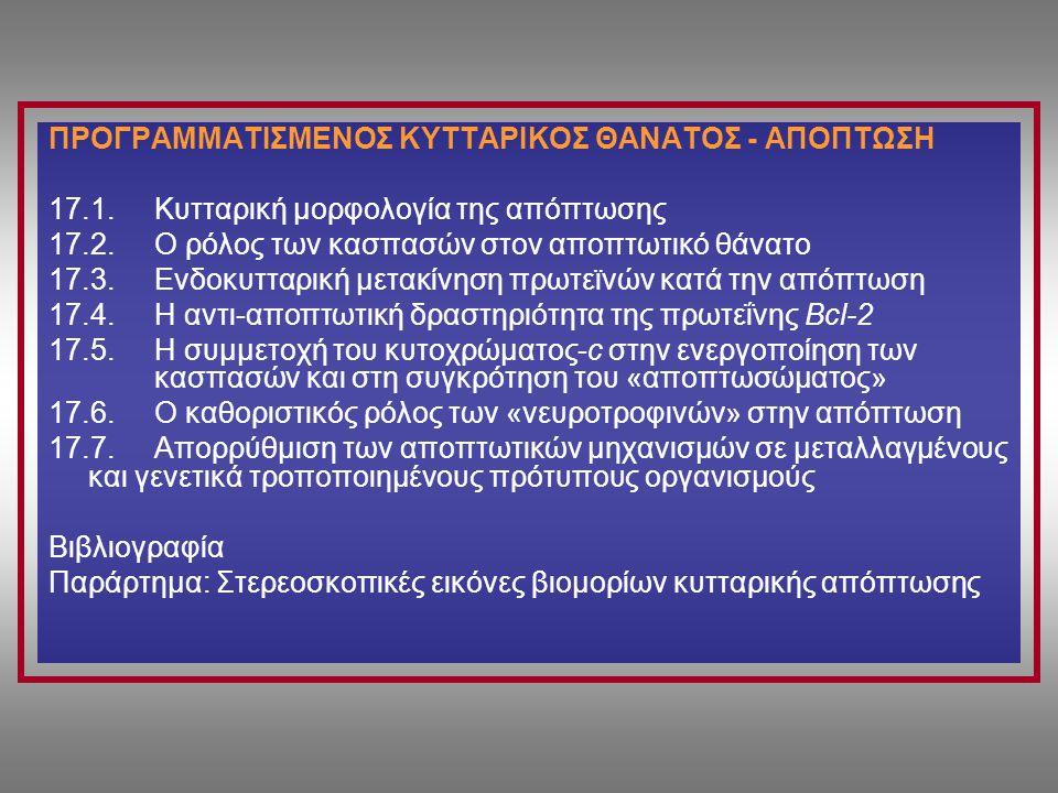 ΠΡΟΓΡΑΜΜΑΤΙΣΜΕΝΟΣ ΚΥΤΤΑΡΙΚΟΣ ΘΑΝΑΤΟΣ - AΠΟΠΤΩΣΗ