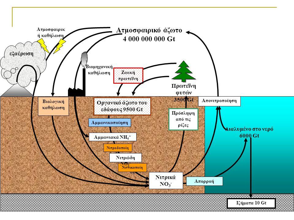 Οργανικό άζωτο του εδάφους 9500 Gt Ατμοσφαιρική καθήλωση