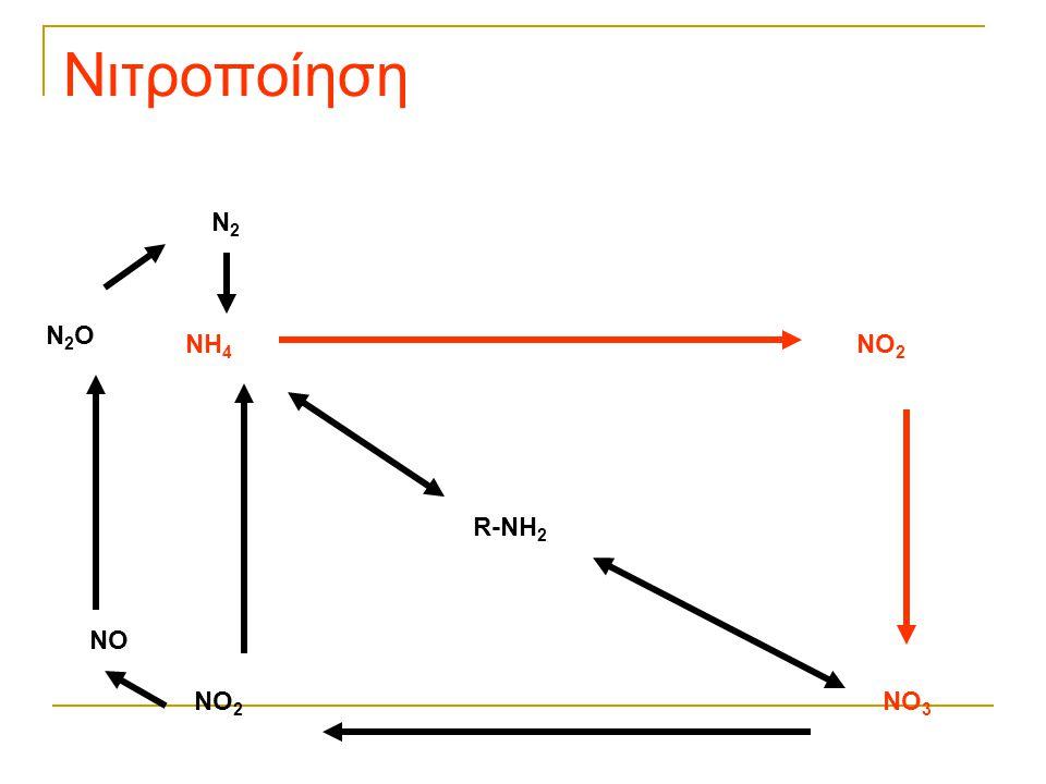 Νιτροποίηση N2 N2O NH4 NO2 R-NH2 NO NO2 NO3