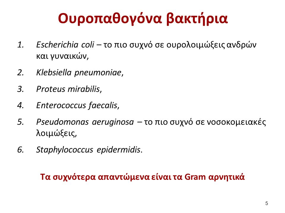 Συνήθη μικρόβια ουρολοιμώξεων (1 από 2)