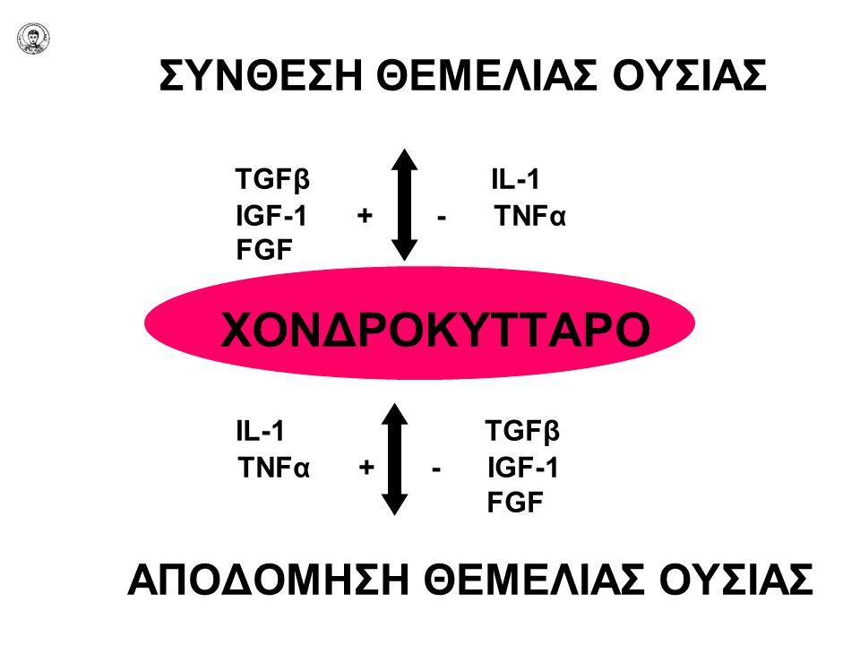 ΣΥΝΘΕΣΗ ΘΕΜΕΛΙΑΣ ΟΥΣΙΑΣ. TGFβ IL-1. IGF-1 + - TNFα. FGF ΧΟΝΔΡΟΚΥΤΤΑΡΟ
