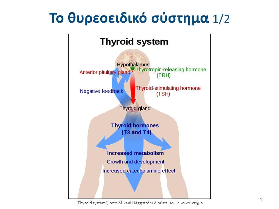 Illu thyroid parathyroid , από CFCF διαθέσιμο ως κοινό κτήμα