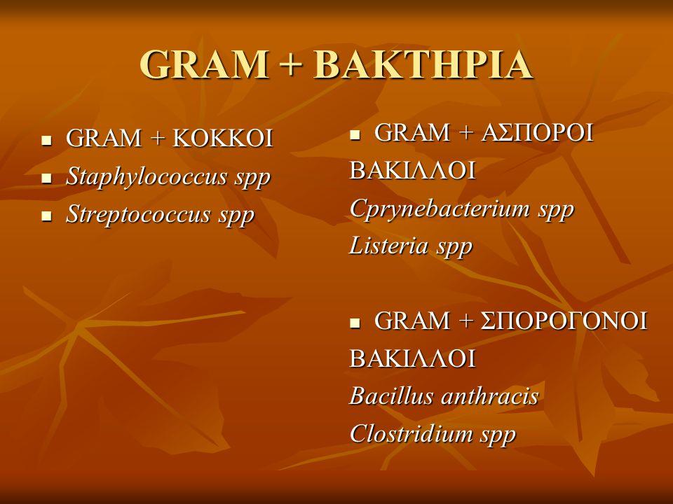 GRAM + ΒΑΚΤΗΡΙΑ GRAM + ΑΣΠΟΡΟΙ GRAM + ΚΟΚΚΟΙ ΒΑΚΙΛΛΟΙ