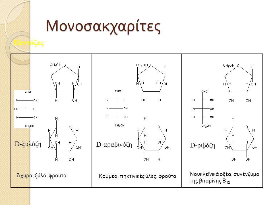 Μονοσακχαρίτες Πεντόζες D-ξυλόζη D-αραβινόζη D-ριβόζη