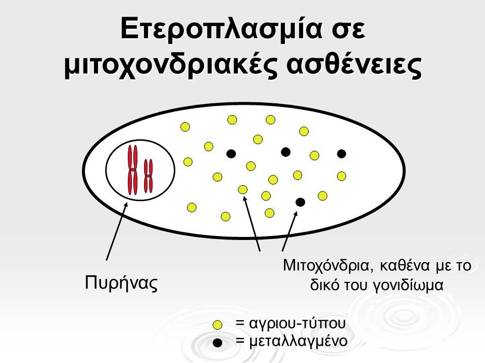 Ετεροπλασμία σε μιτοχονδριακές ασθένειες