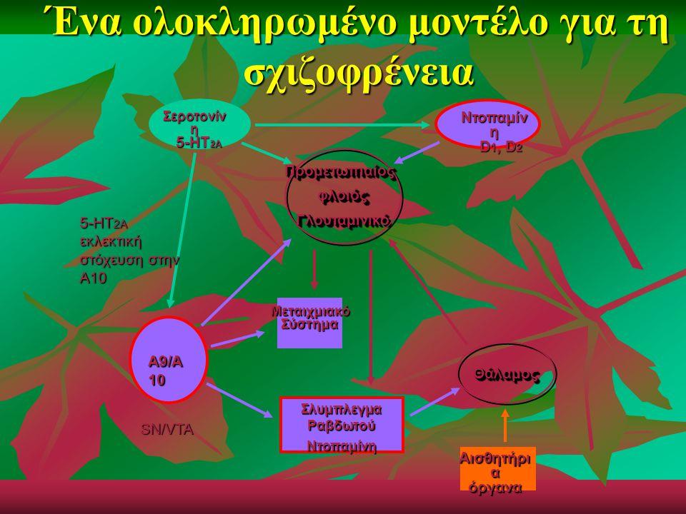 Ένα ολοκληρωμένο μοντέλο για τη σχιζοφρένεια