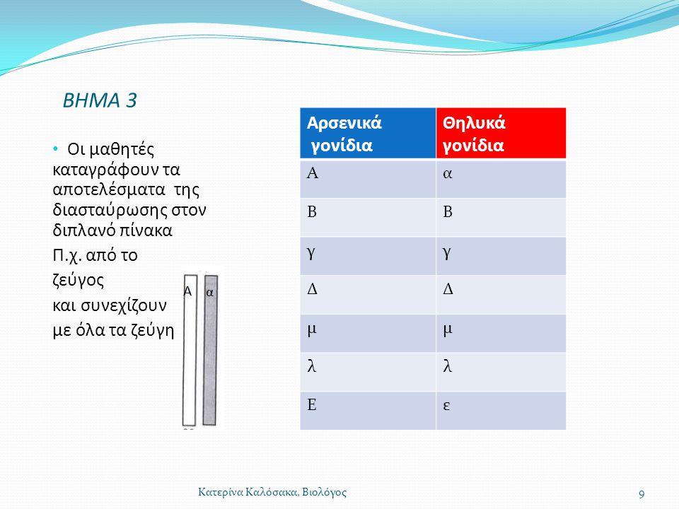 ΒΗΜΑ 3 Αρσενικά γονίδια Θηλυκά