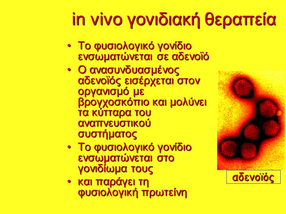 in vivo γονιδιακή θεραπεία