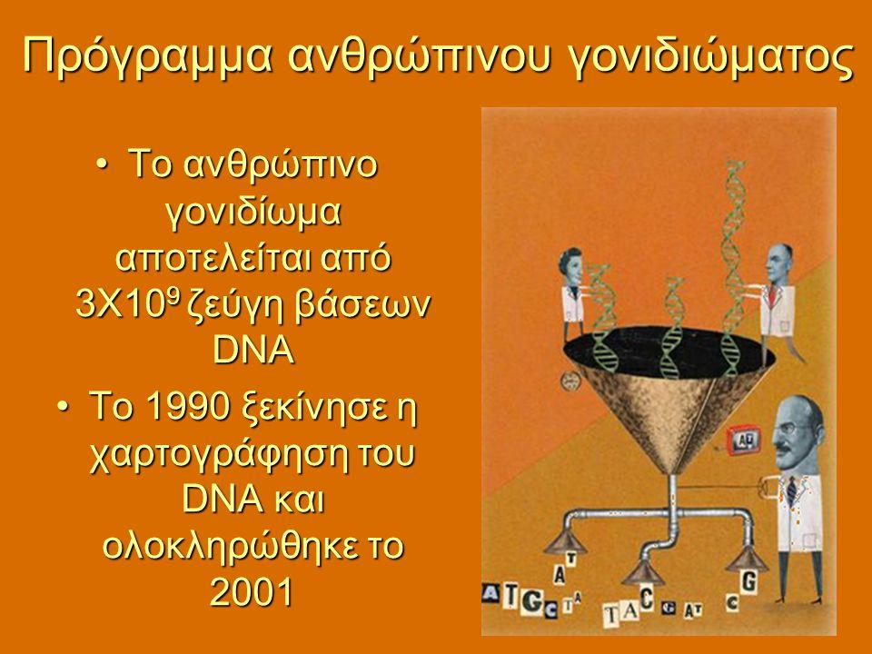 Πρόγραμμα ανθρώπινου γονιδιώματος