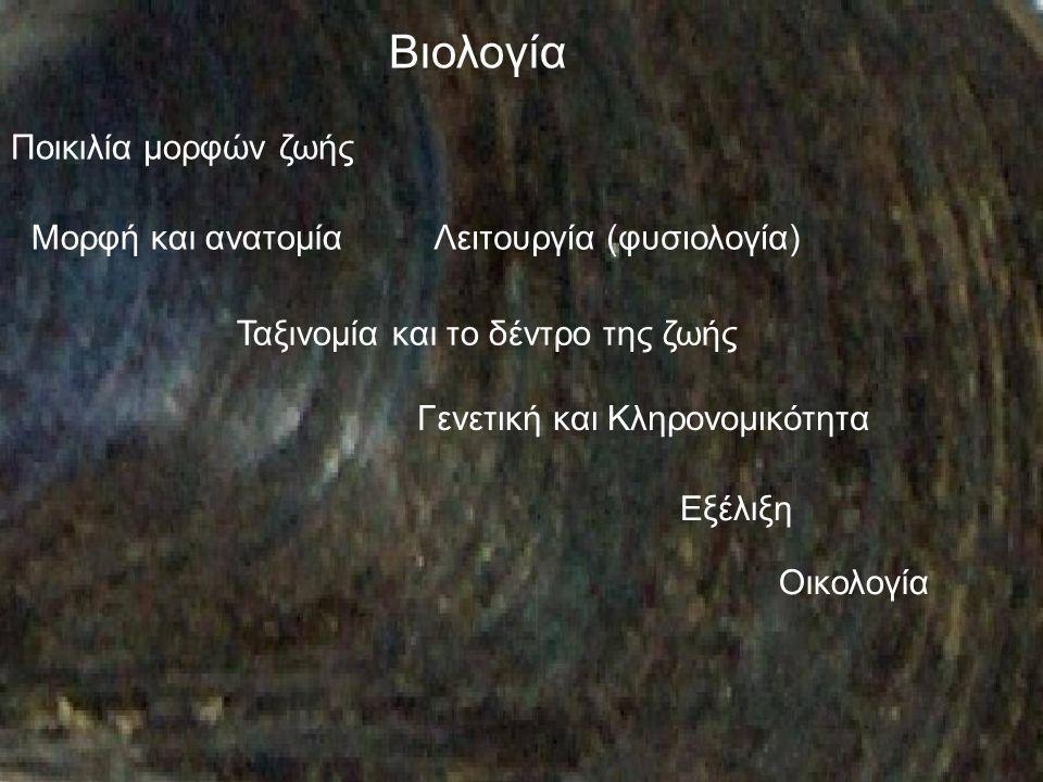 Βιολογία Ποικιλία μορφών ζωής Μορφή και ανατομία