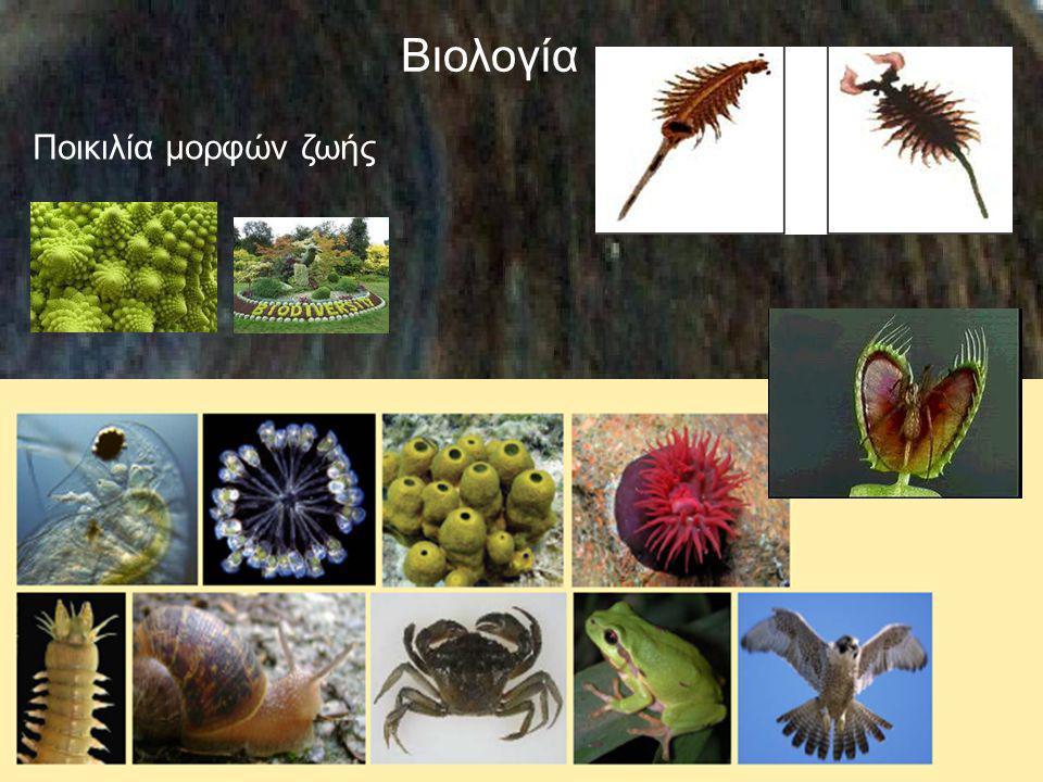 Βιολογία Ποικιλία μορφών ζωής