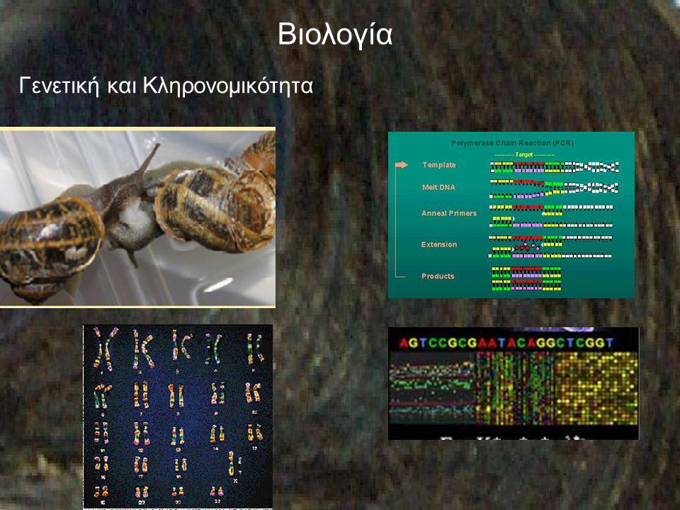 Βιολογία Γενετική και Κληρονομικότητα