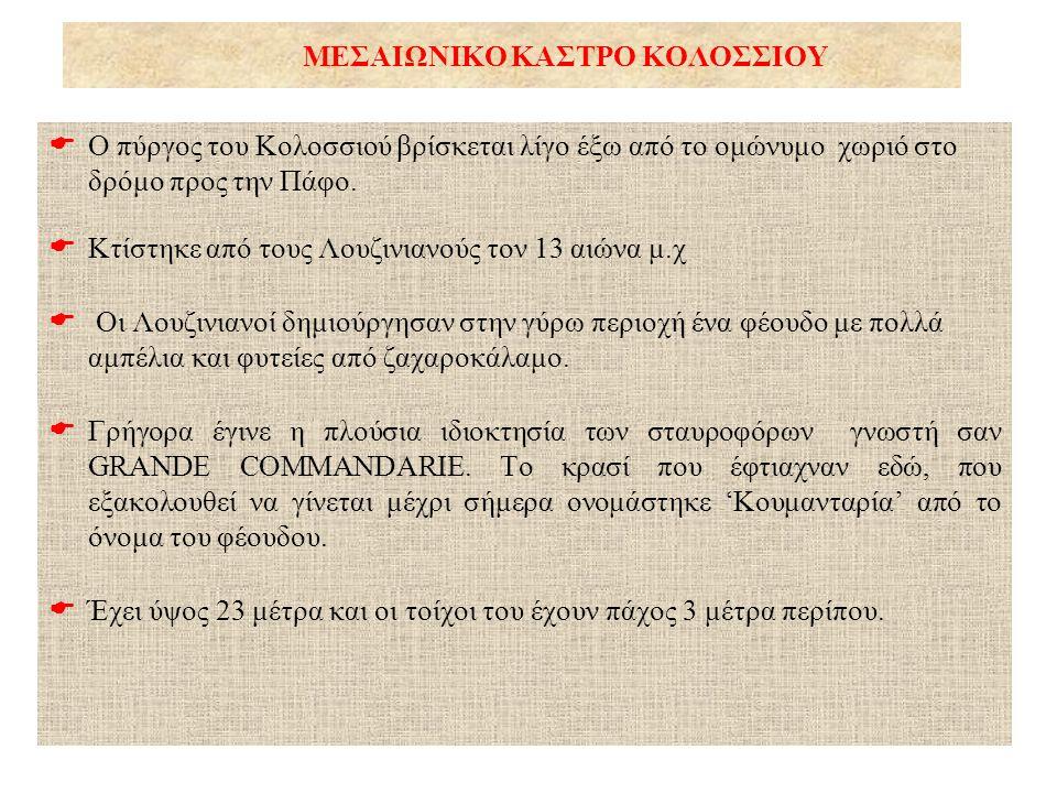 ΜΕΣΑΙΩΝΙΚΟ ΚΑΣΤΡΟ ΚΟΛΟΣΣΙΟΥ