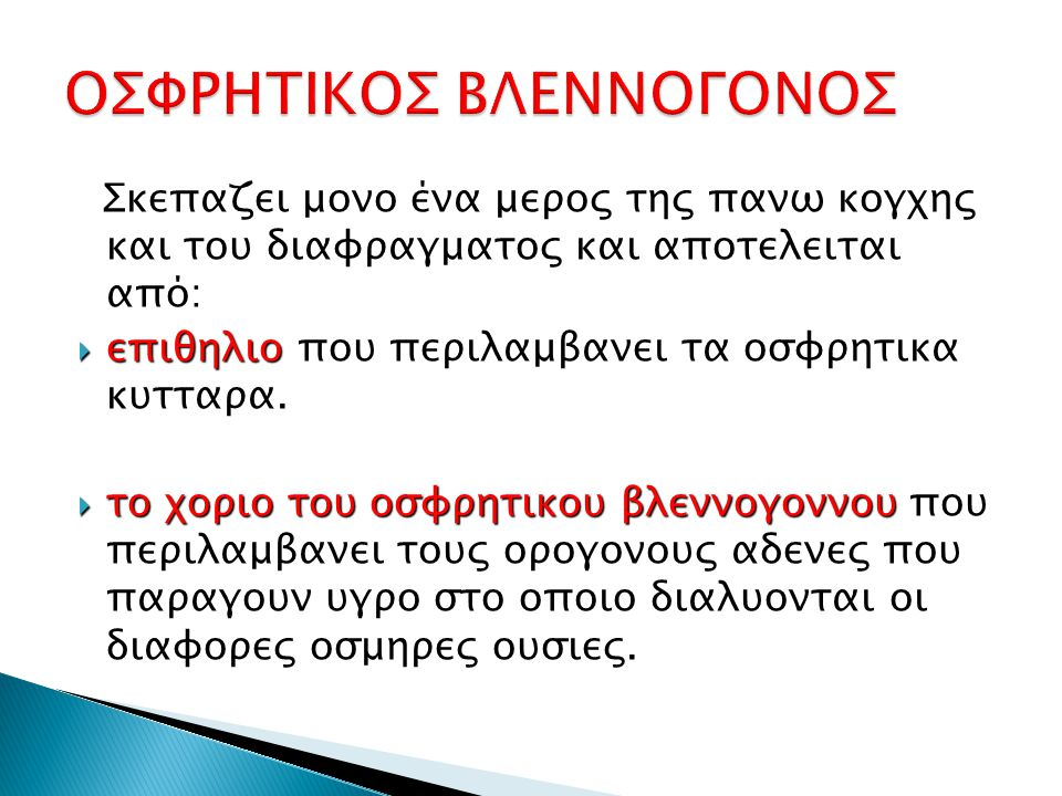 ΟΣΦΡΗΤΙΚΟΣ ΒΛΕΝΝΟΓΟΝΟΣ