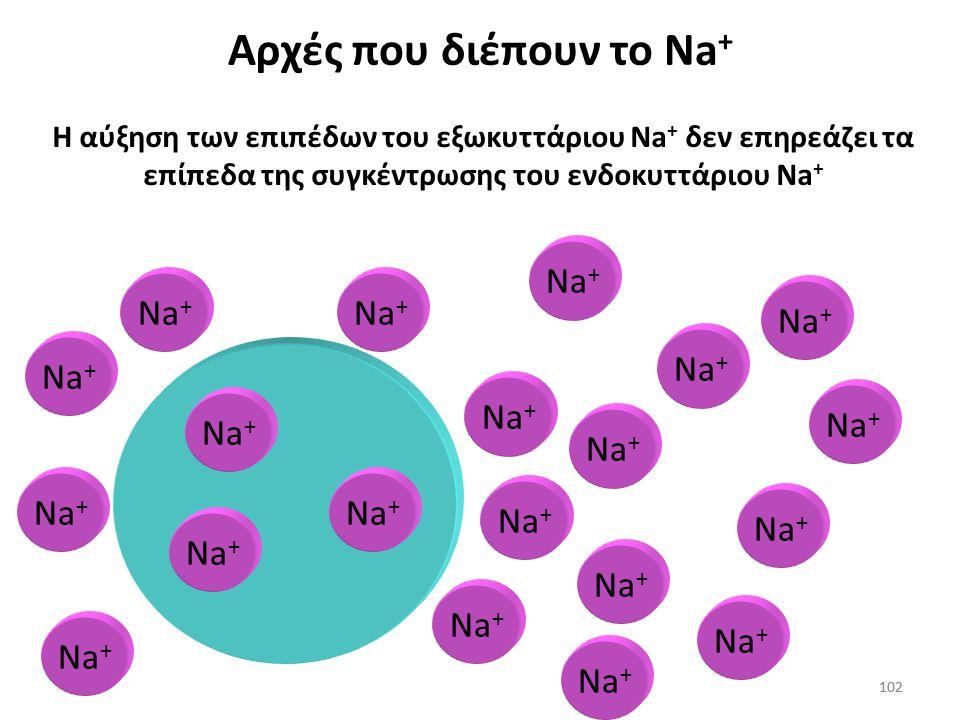 Αρχές που διέπουν το Na+