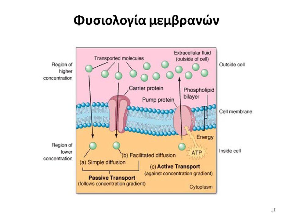 Φυσιολογία μεμβρανών 11