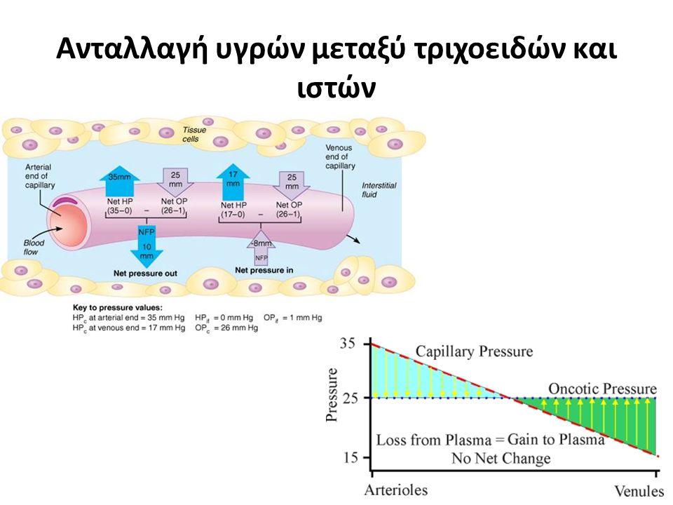 Ανταλλαγή υγρών μεταξύ τριχοειδών και ιστών
