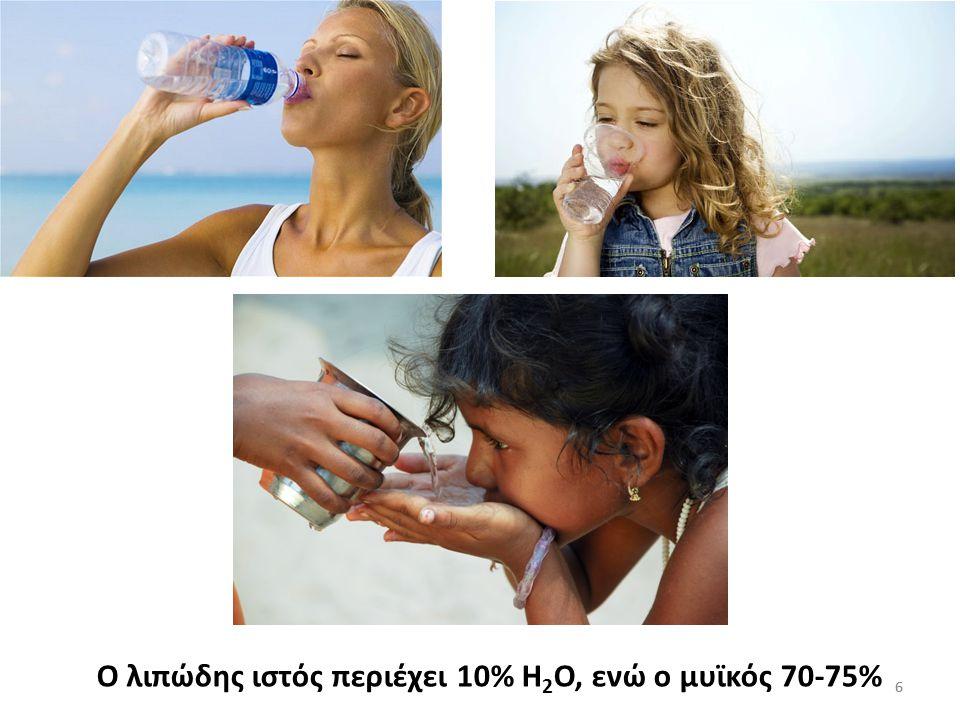 Ο λιπώδης ιστός περιέχει 10% Η2Ο, ενώ ο μυϊκός 70-75%