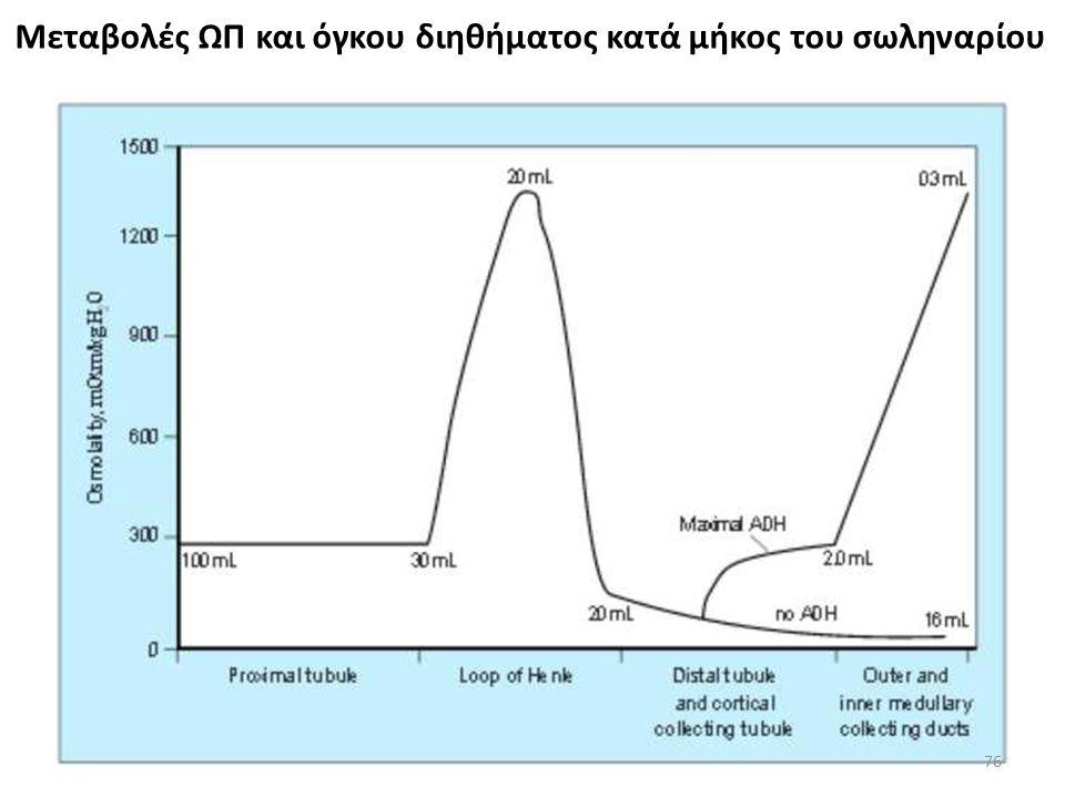 Μεταβολές ΩΠ και όγκου διηθήματος κατά μήκος του σωληναρίου