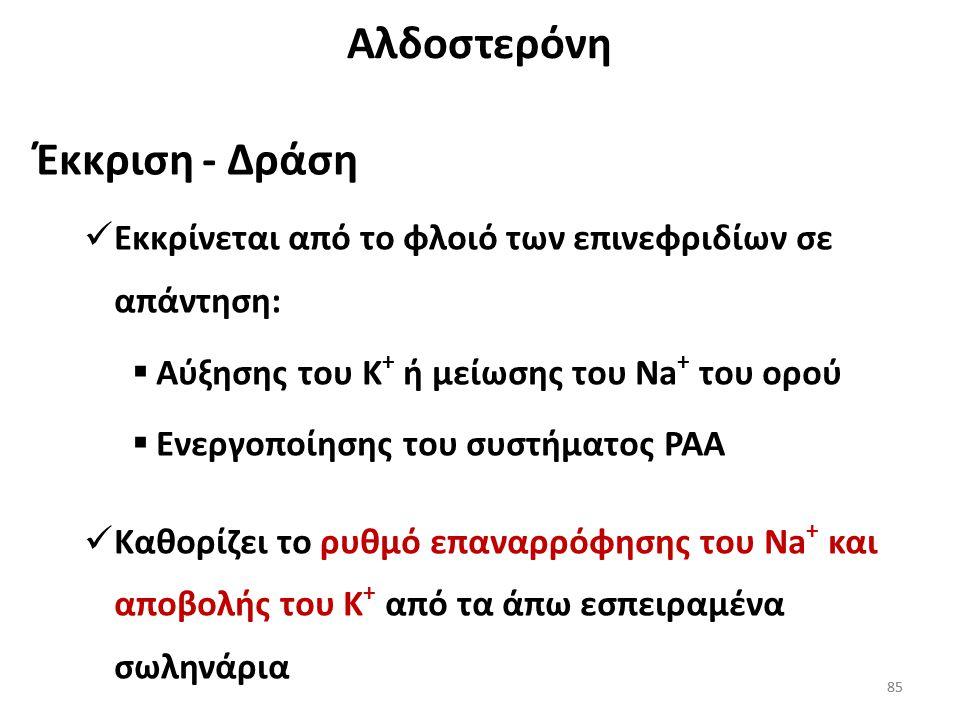 Αλδοστερόνη Έκκριση - Δράση