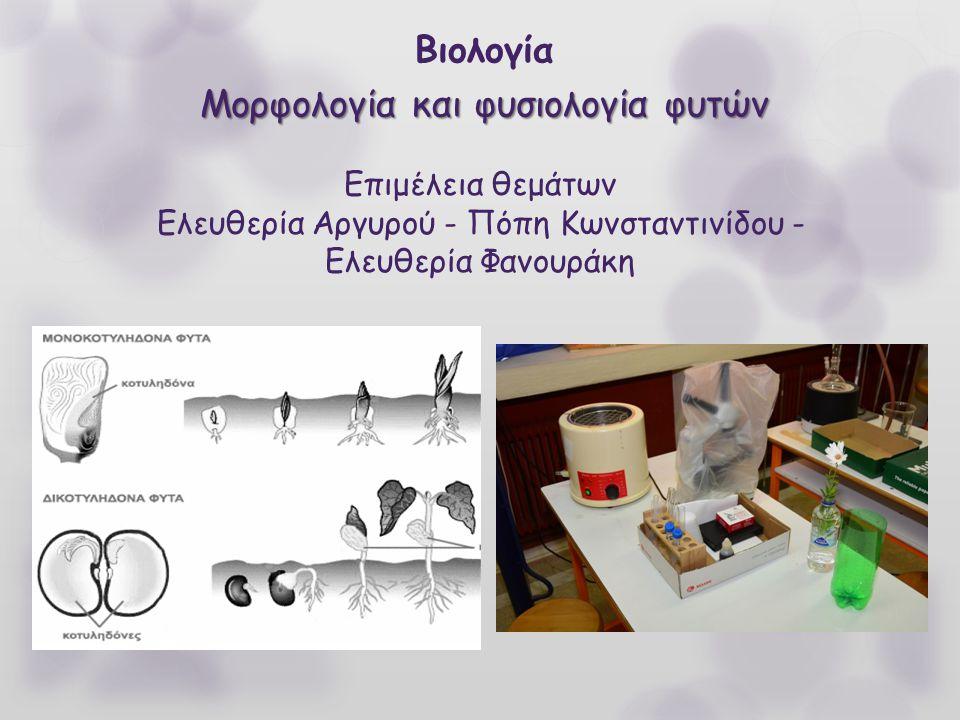 Βιολογία Μορφολογία και φυσιολογία φυτών