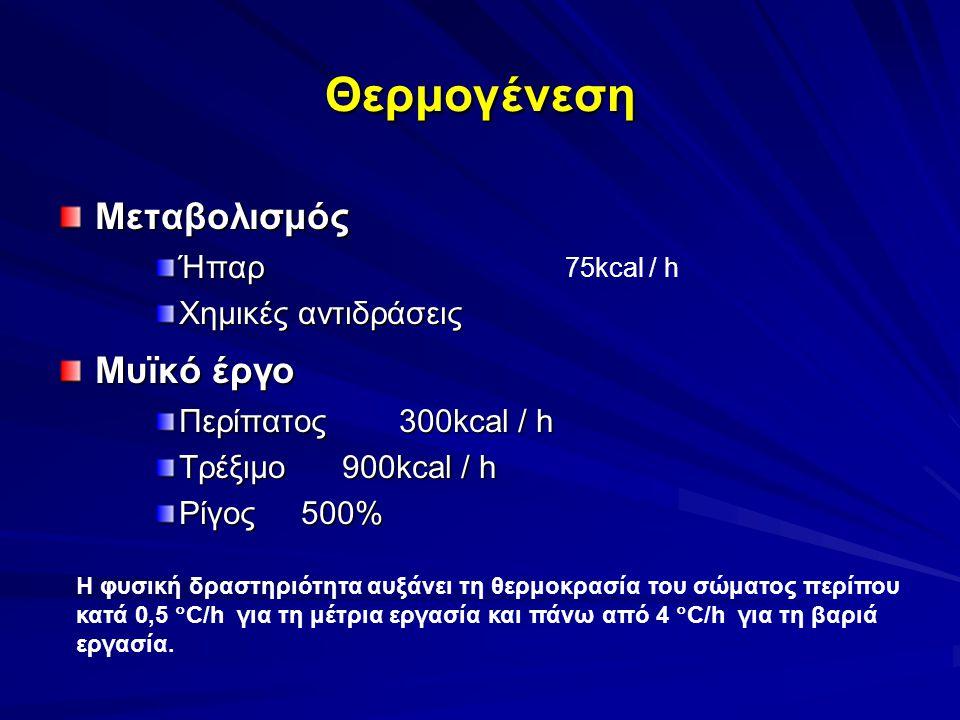 Θερμογένεση Μεταβολισμός Μυϊκό έργο Ήπαρ Χημικές αντιδράσεις
