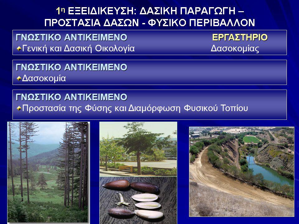 ΓΝΩΣΤΙΚΟ ΑΝΤΙΚΕΙΜΕΝΟ ΕΡΓΑΣΤΗΡΙΟ