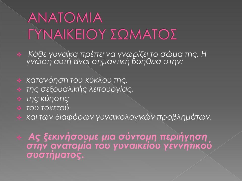 ΑΝΑΤΟΜΙΑ ΓΥΝΑΙΚΕΙΟΥ ΣΩΜΑΤΟΣ