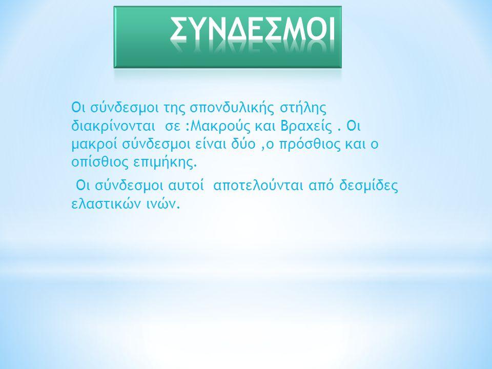 ΣΥΝΔΕΣΜΟΙ