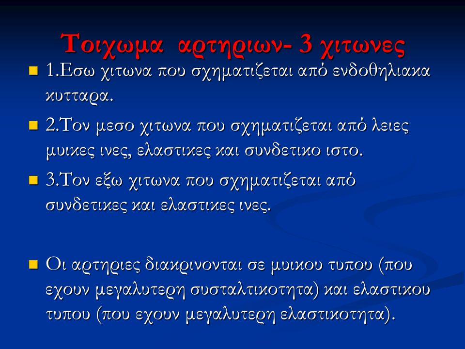 Τοιχωμα αρτηριων- 3 χιτωνες