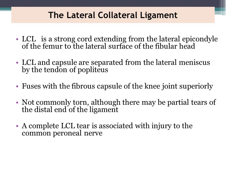 The Lateral Collateral Ligament