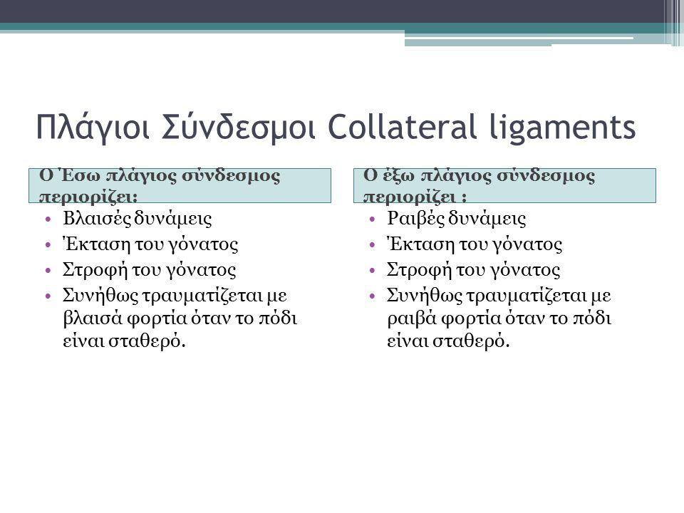 Πλάγιοι Σύνδεσμοι Collateral ligaments