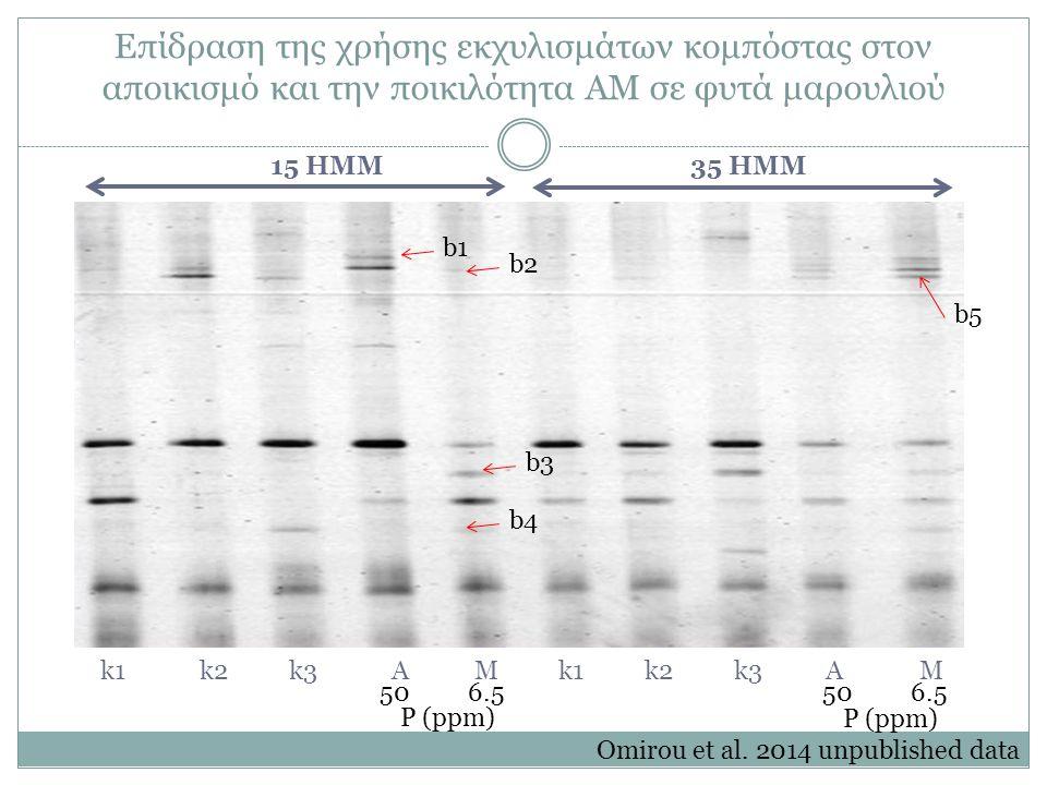 Επίδραση της χρήσης εκχυλισμάτων κομπόστας στον αποικισμό και την ποικιλότητα ΑΜ σε φυτά μαρουλιού